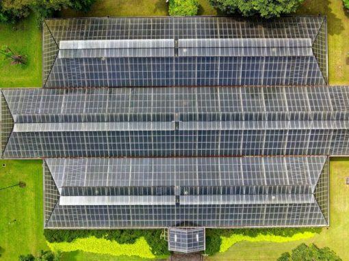 Immobilien- und Dachinspektion