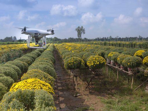 Agrar- und Forstwirtschaft